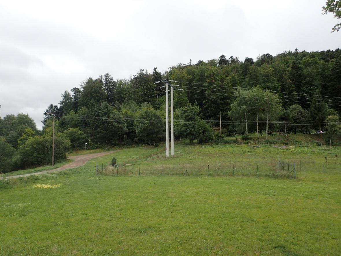 P8310004.jpg
