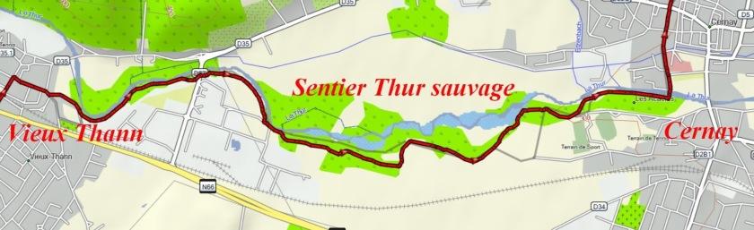 Thur sauvage.jpg