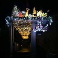 Visite de nuit à Thann